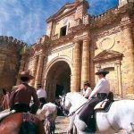 horses carmona seville andalusia