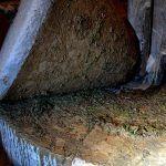 olive oil mill visit seville