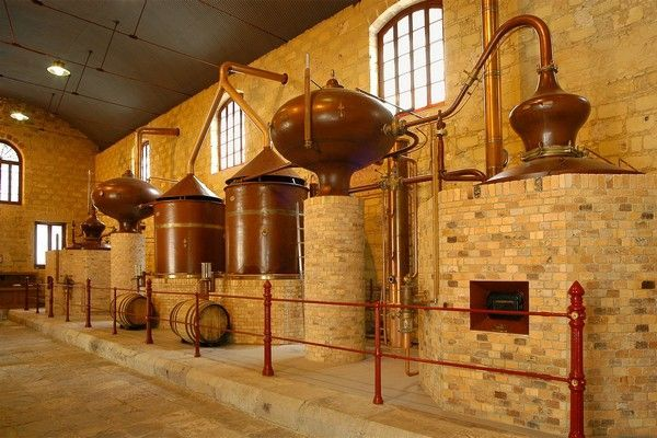 wine cellar andalusia