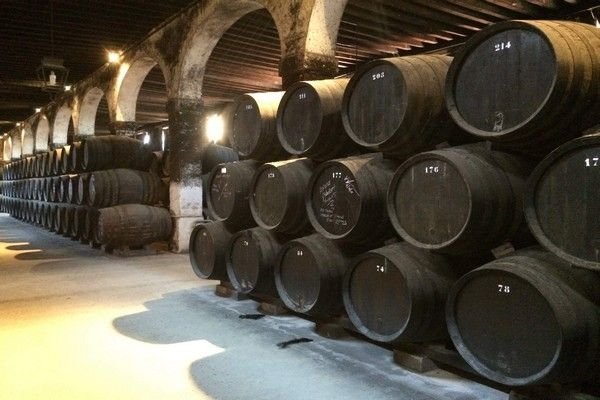 wine cellar seville andalusia