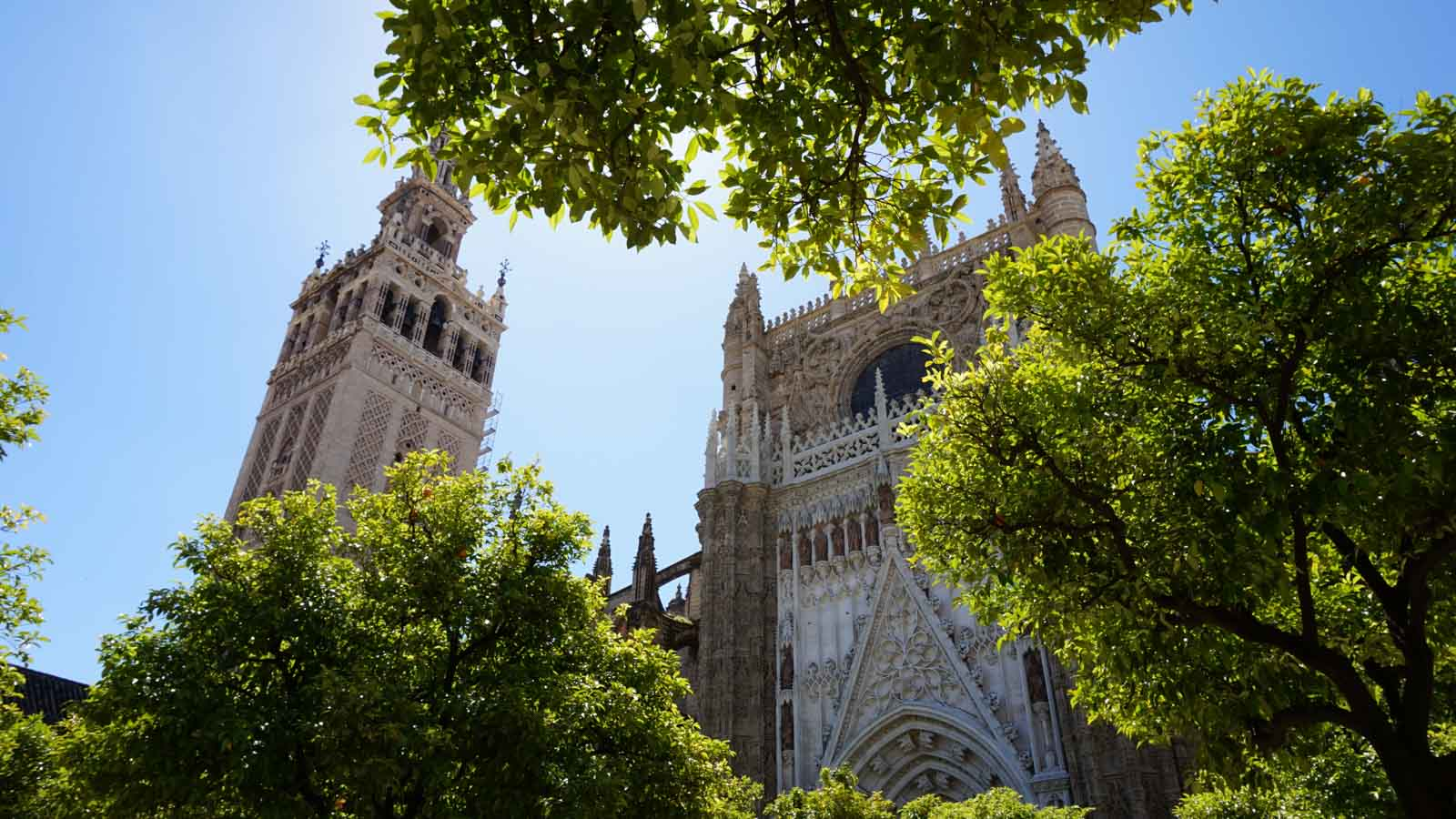 cathedral giralda seville guided tour
